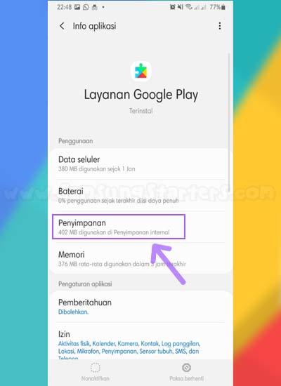 Penyimpanan Google Play Service
